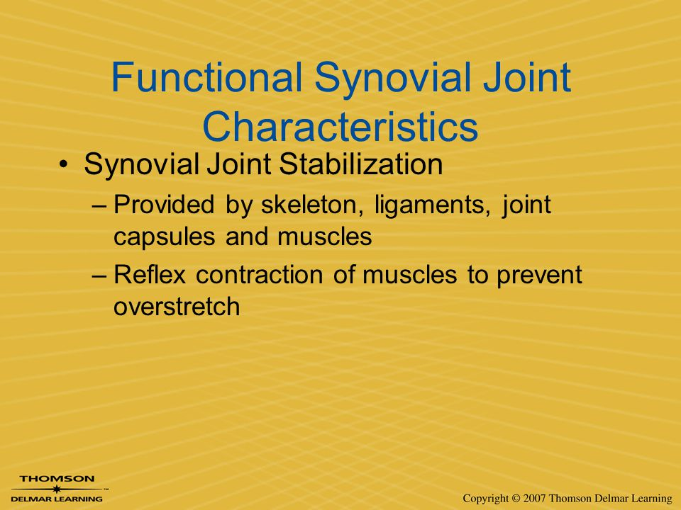 Functional Synovial Joint Characteristics