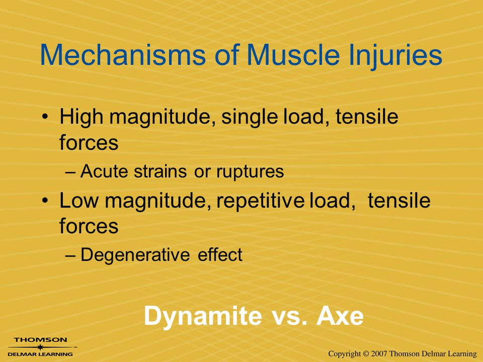 Mechanisms of Muscle Injuries