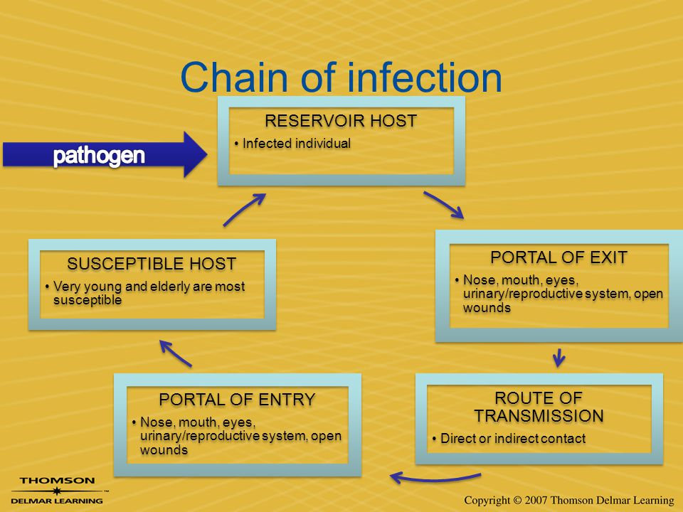 Chain of infection pathogen RESERVOIR HOST PORTAL OF EXIT