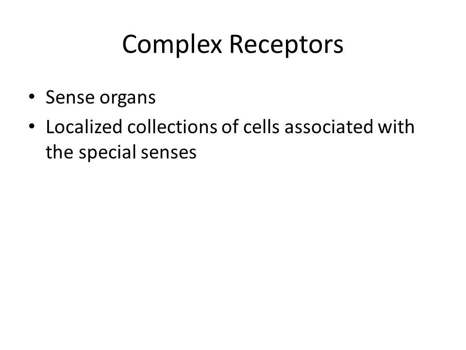 Complex Receptors Sense organs