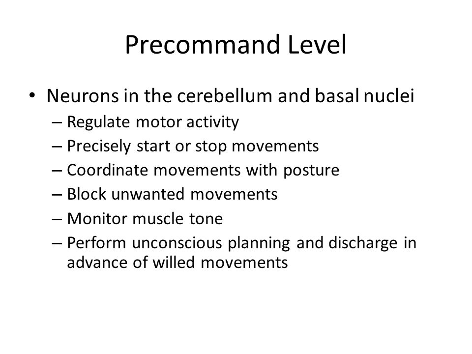 Precommand Level Neurons in the cerebellum and basal nuclei