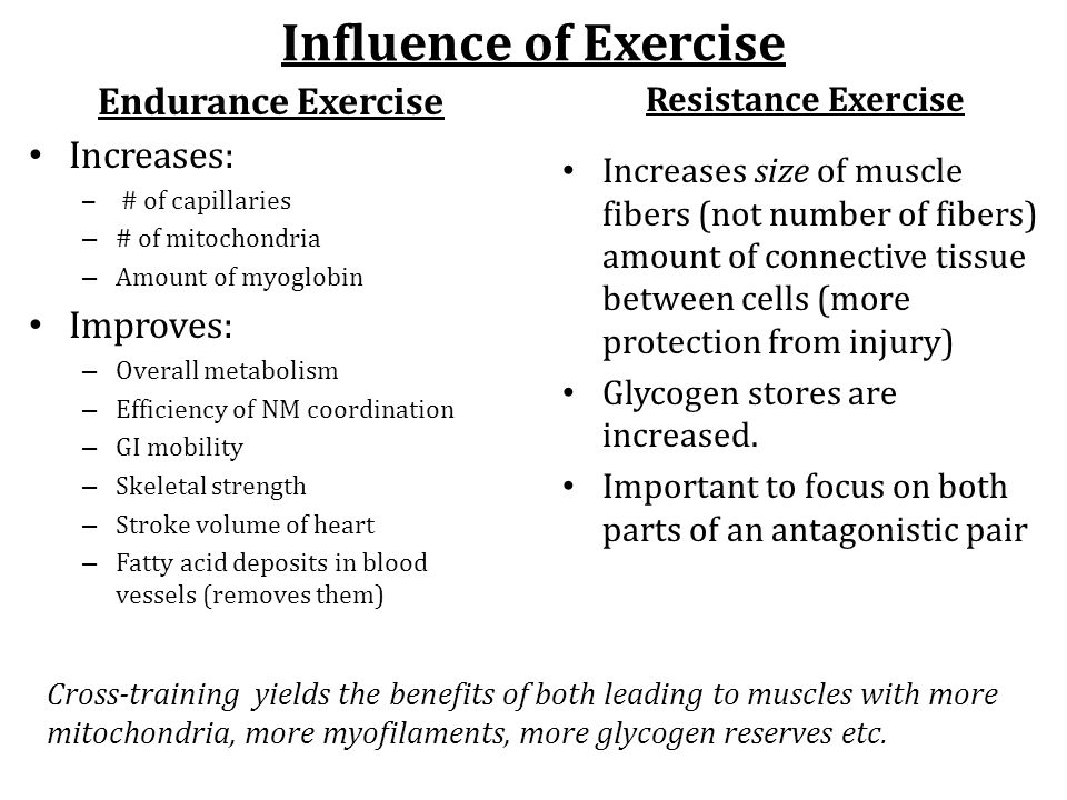 Influence of Exercise Endurance Exercise Increases: Improves: