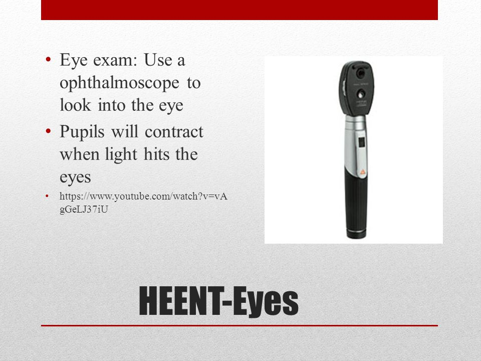 HEENT-Eyes Eye exam: Use a ophthalmoscope to look into the eye
