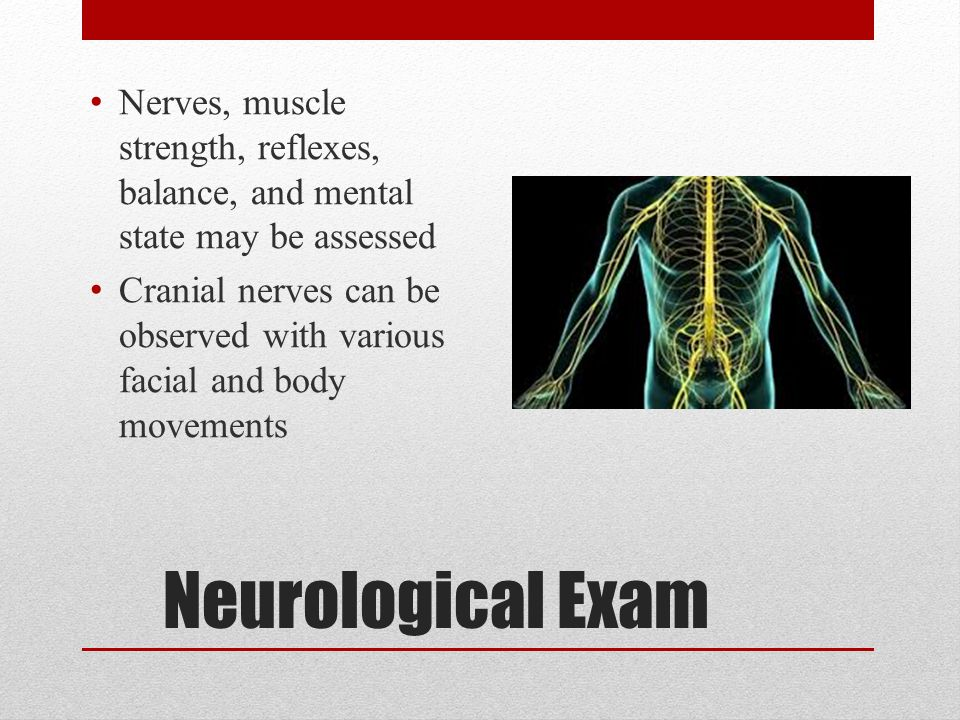 Nerves, muscle strength, reflexes, balance, and mental state may be assessed