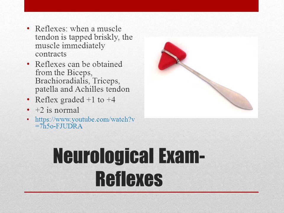 Neurological Exam-Reflexes