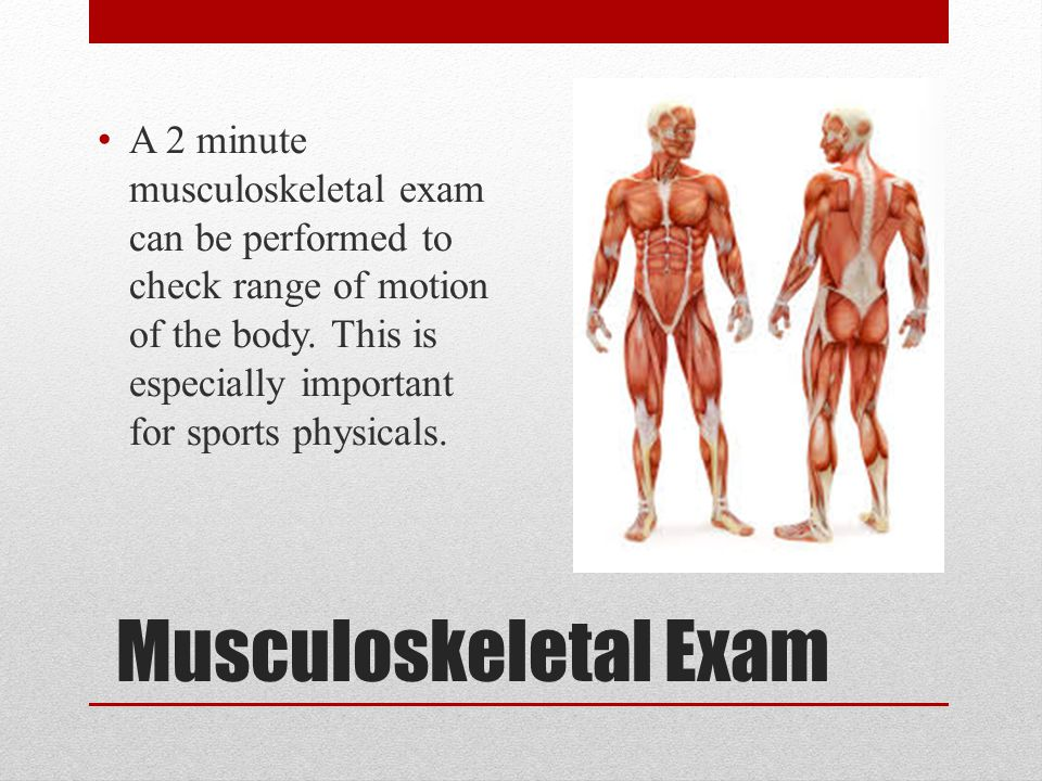 A 2 minute musculoskeletal exam can be performed to check range of motion of the body. This is especially important for sports physicals.