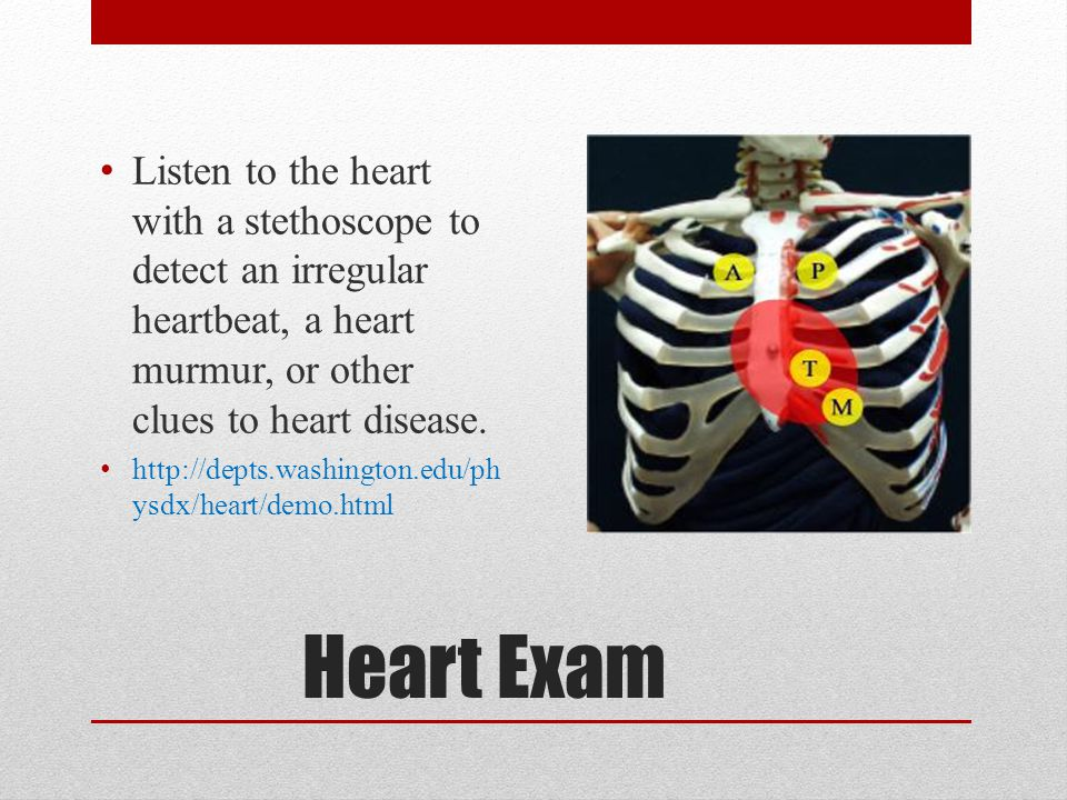 Listen to the heart with a stethoscope to detect an irregular heartbeat, a heart murmur, or other clues to heart disease.