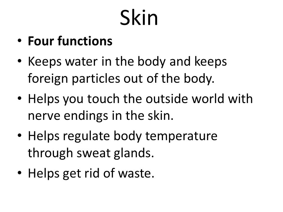 Skin Four functions. Keeps water in the body and keeps foreign particles out of the body.