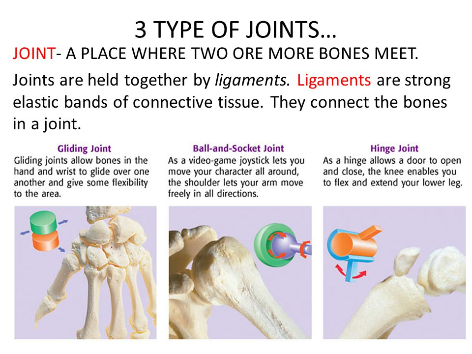 3 TYPE OF JOINTS…