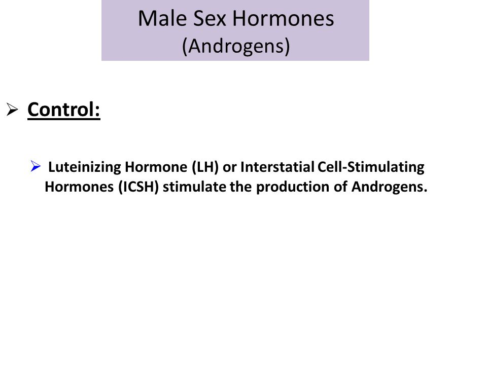 Male Sex Hormones (Androgens)