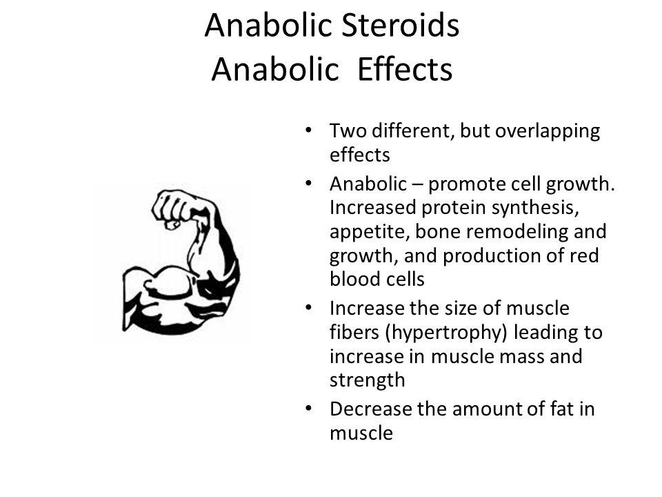Anabolic Steroids Anabolic Effects