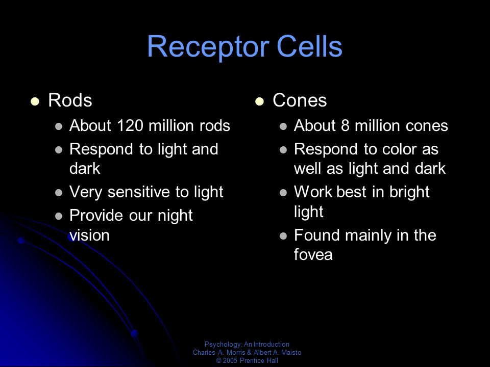 Receptor Cells Rods Cones About 120 million rods