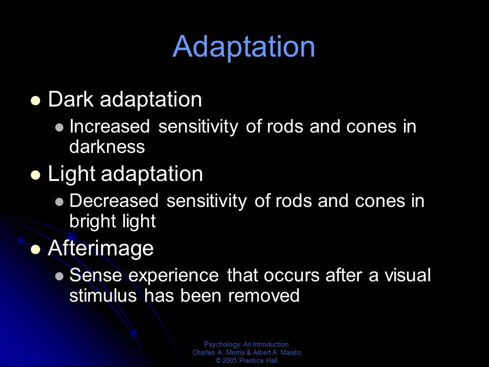 Adaptation Dark adaptation Light adaptation Afterimage