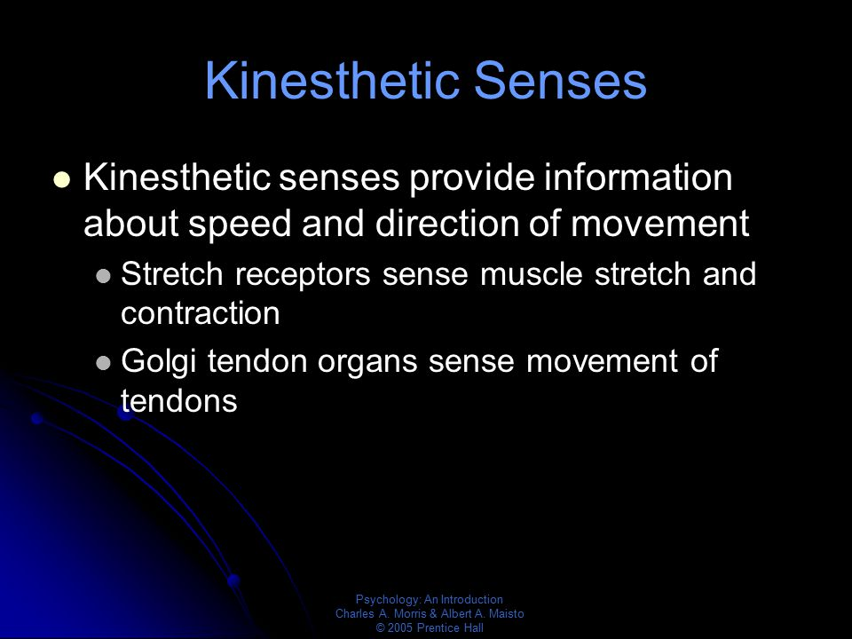 Kinesthetic Senses Kinesthetic senses provide information about speed and direction of movement.