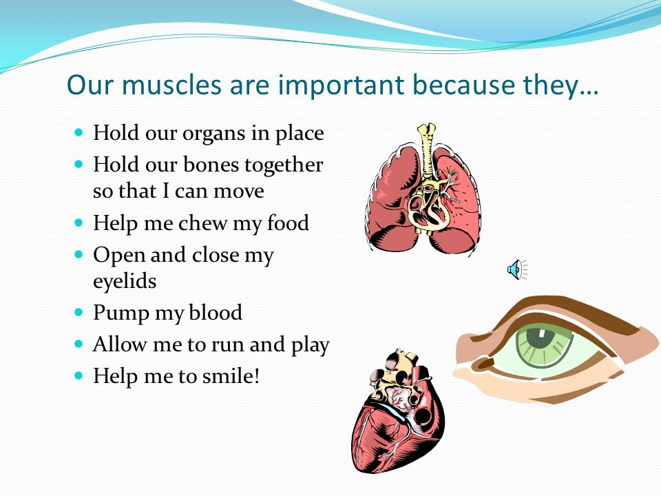 Our muscles are important because they…