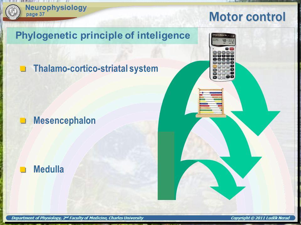 Motor control Phylogenetic principle of inteligence