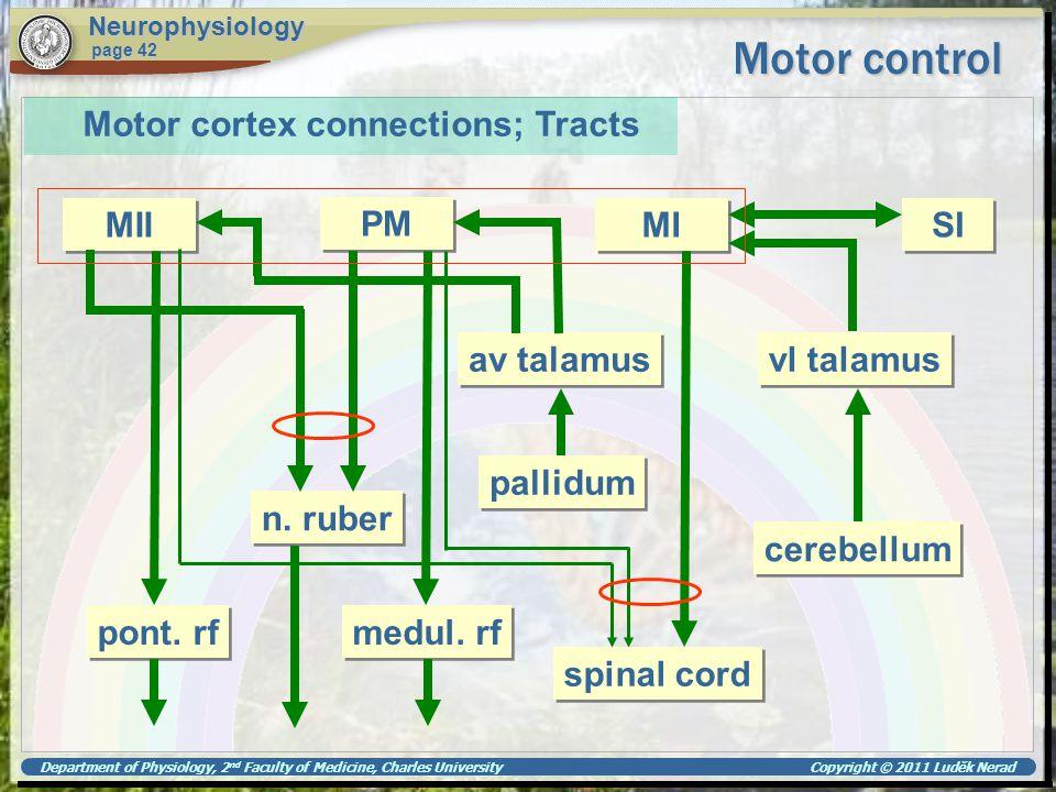 Motor control Motor cortex connections; Tracts MII PM MI SI av talamus