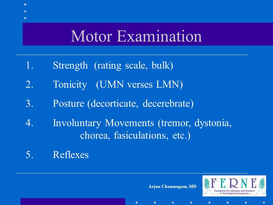 Motor Examination 1. Strength (rating scale, bulk)