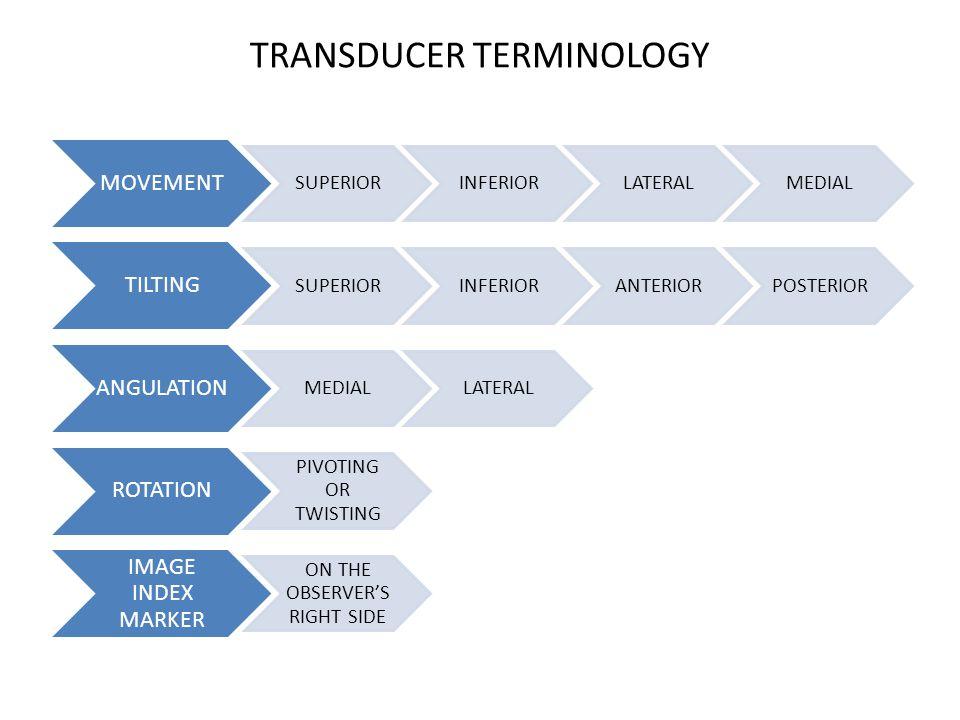 TRANSDUCER TERMINOLOGY
