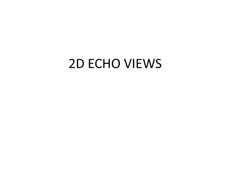 2D ECHO VIEWS