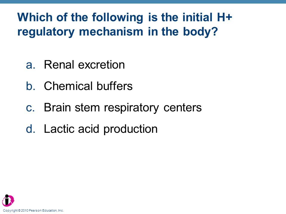 Brain stem respiratory centers Lactic acid production