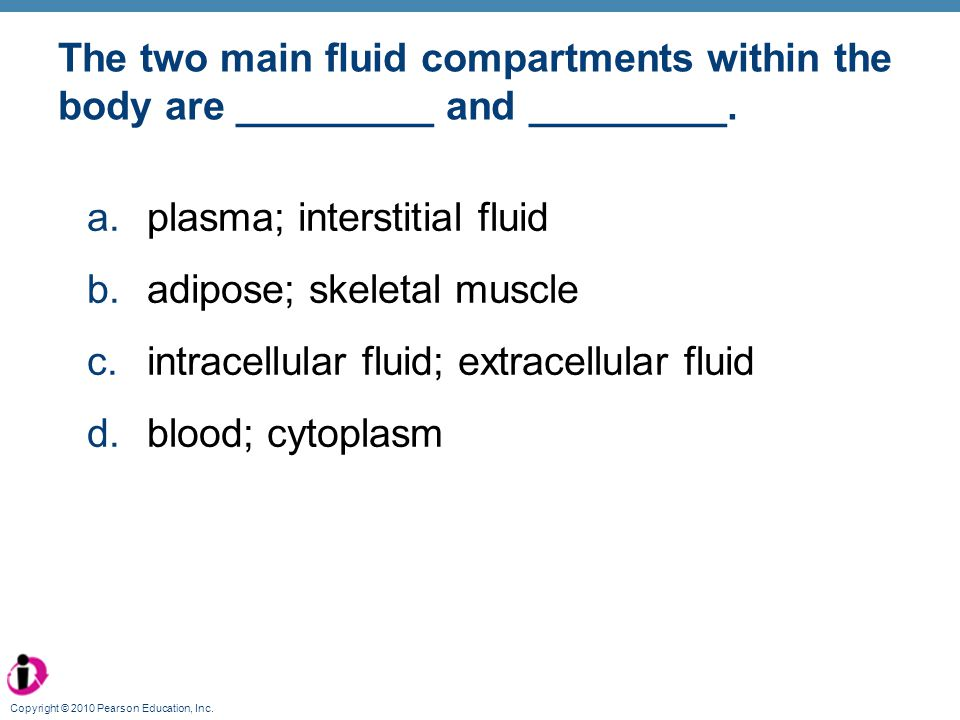 plasma; interstitial fluid adipose; skeletal muscle