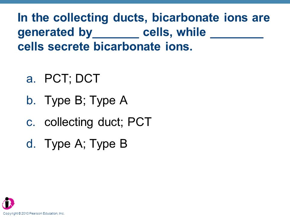 In the collecting ducts, bicarbonate ions are generated by_______ cells, while ________ cells secrete bicarbonate ions.