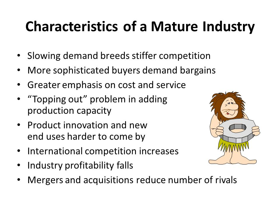 Characteristics of a Mature Industry