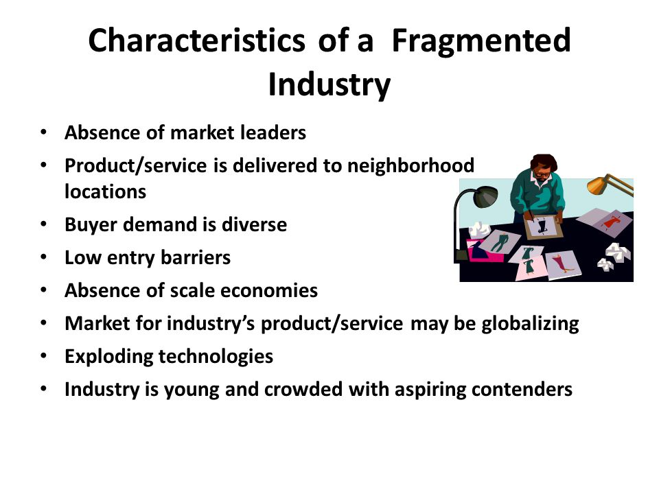 Characteristics of a Fragmented Industry