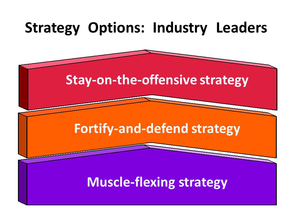 Strategy Options: Industry Leaders