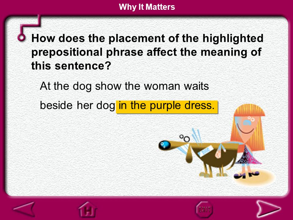 At the dog show the woman waits beside her dog in the purple dress.