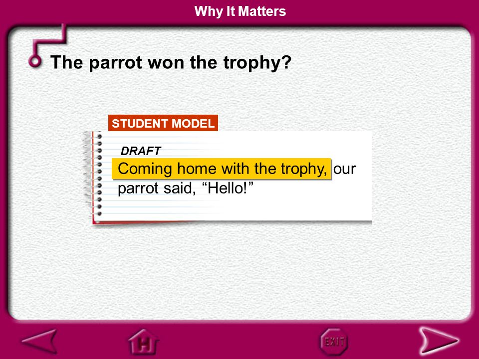 The parrot won the trophy