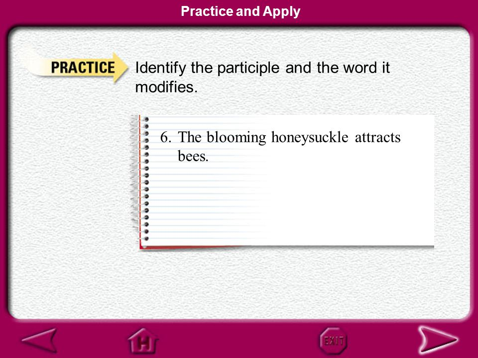 Identify the participle and the word it modifies.