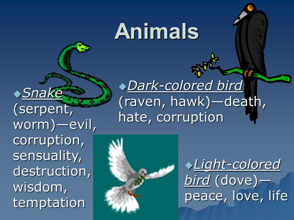 Animals Dark-colored bird (raven, hawk)—death, hate, corruption