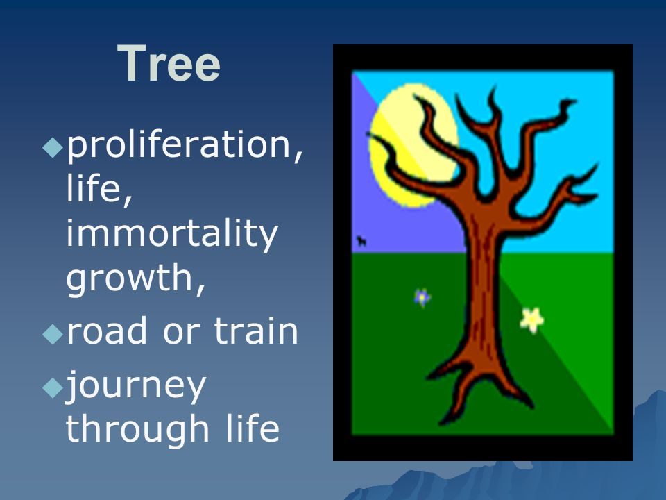 Tree proliferation, life, immortality growth, road or train
