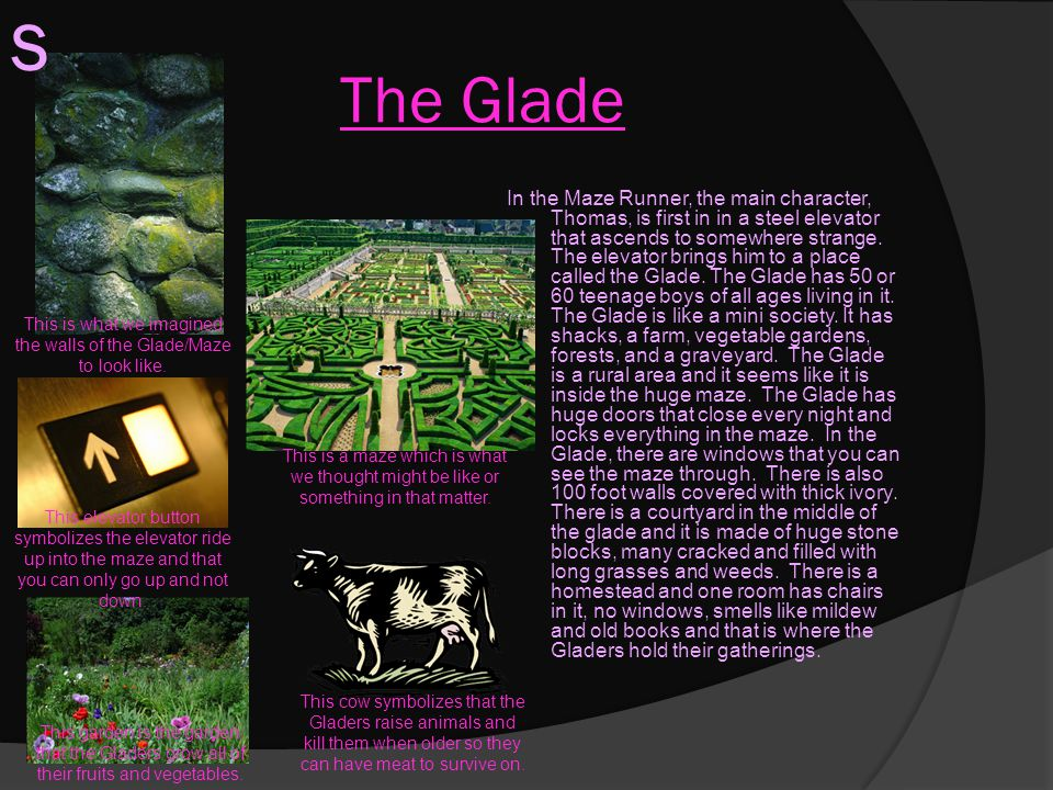 This is what we imagined the walls of the Glade/Maze to look like.