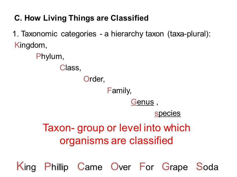 C. How Living Things are Classified