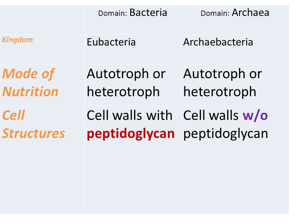 Autotroph or heterotroph Cell Structures Cell walls with peptidoglycan