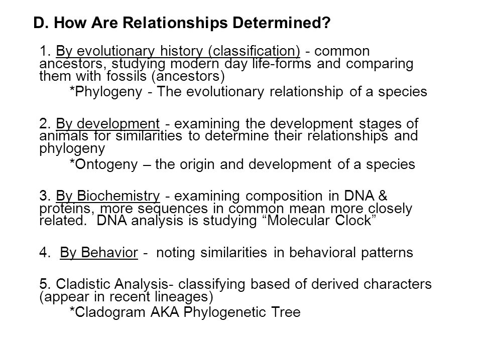 D. How Are Relationships Determined