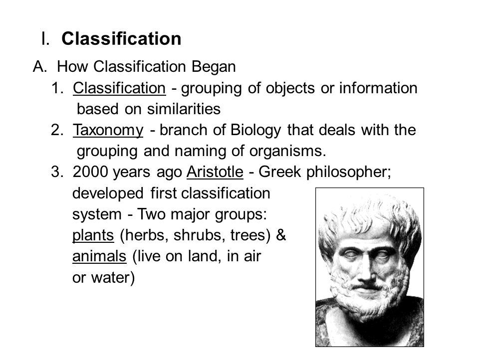 I. Classification A. How Classification Began