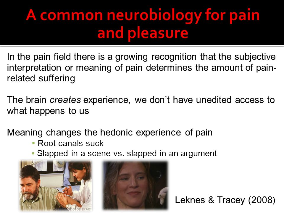 A common neurobiology for pain and pleasure