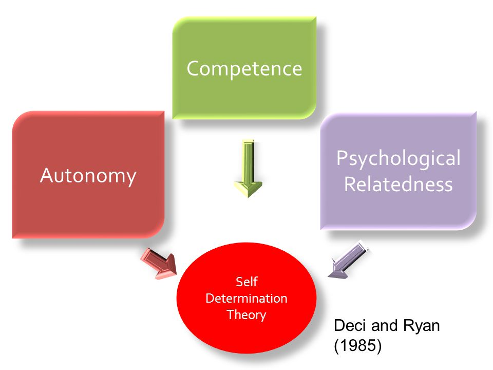 Psychological Relatedness
