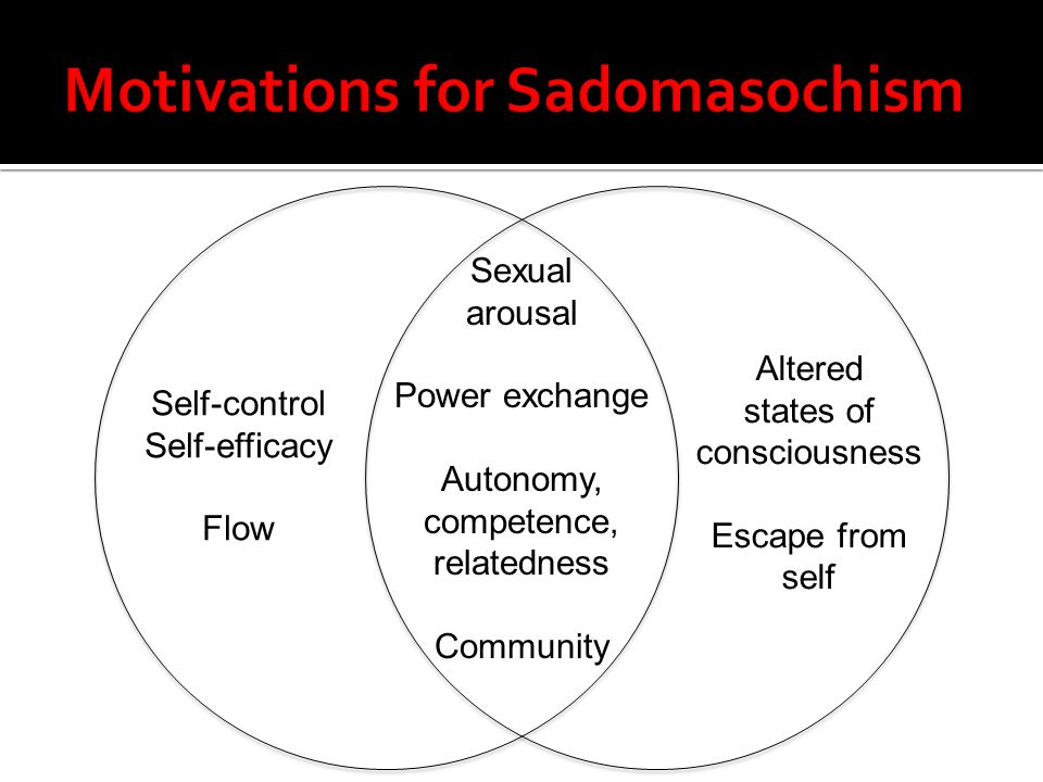 Motivations for Sadomasochism