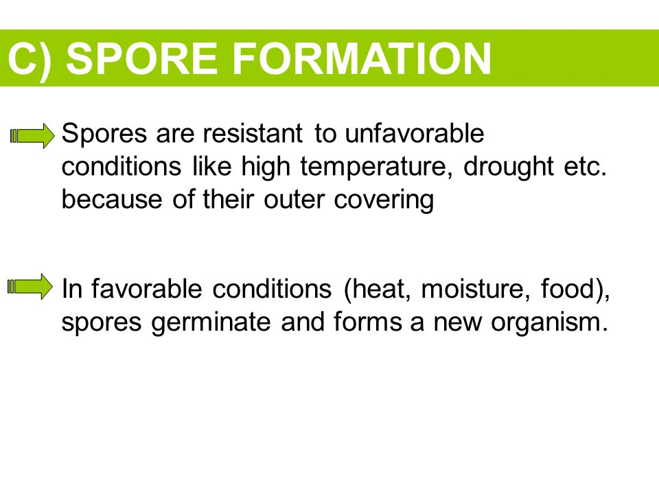 C) SPORE FORMATION Spores are resistant to unfavorable conditions like high temperature, drought etc. because of their outer covering.