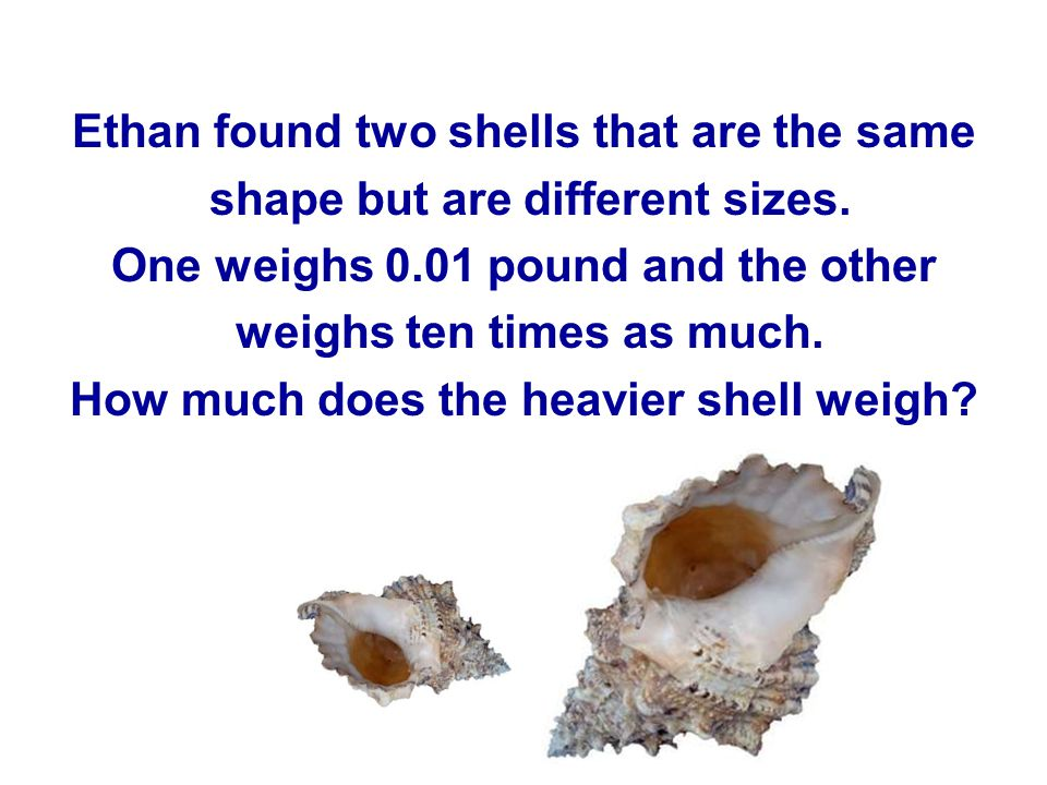 Ethan found two shells that are the same