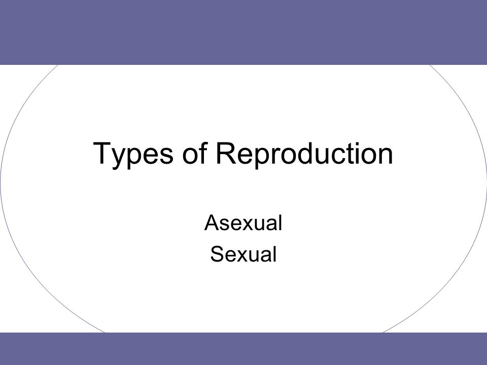Types of Reproduction Asexual Sexual