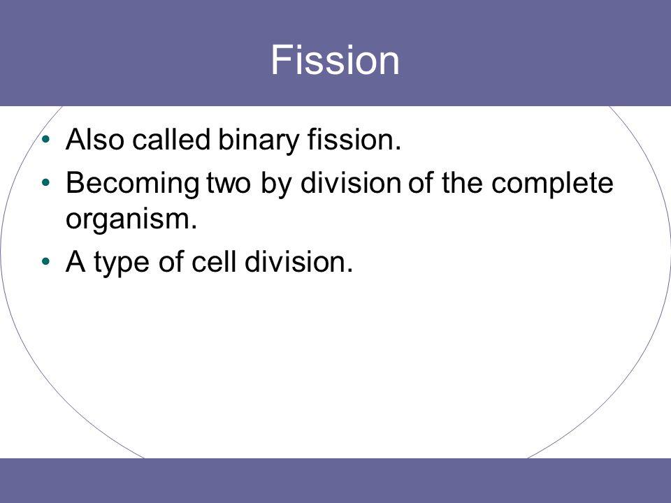 Fission Also called binary fission.