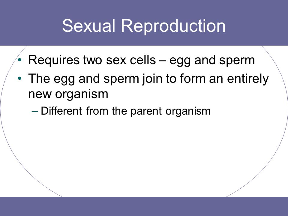 Sexual Reproduction Requires two sex cells – egg and sperm