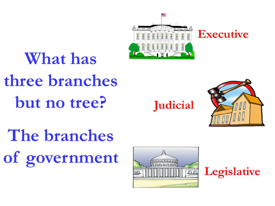 What has three branches but no tree The branches of government