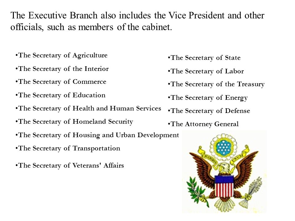 The Executive Branch also includes the Vice President and other officials, such as members of the cabinet.